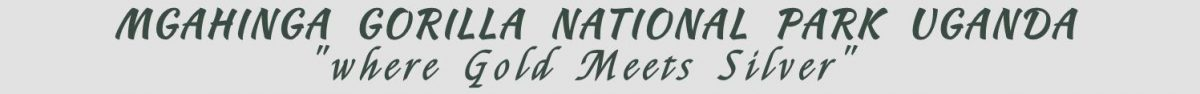 MGAHINGA NATIONAL PARK Logo